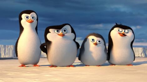 I_pinguini_di_Madagascar