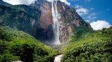 10) Tutti gli scenari furono dipinti a manotranne la grande cascata che fu frutto dell'unione di alcune immagini del Salto Angel.