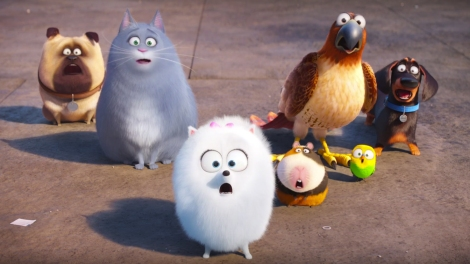 pets-vita-da-animali-full-trailer-25