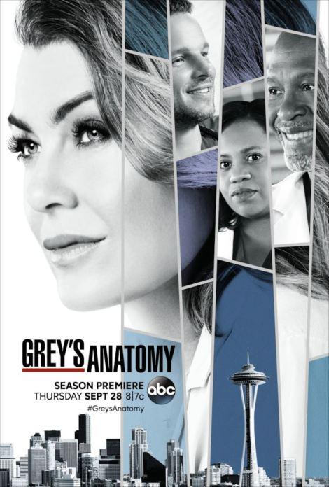 il-poster-di-greys-anatomy-14-maxw-654