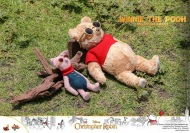 Hot Toys Winnie The Pooh (2)