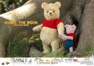 Hot Toys Winnie The Pooh (4)